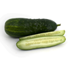 Local Organic Pickling Cucumbers
