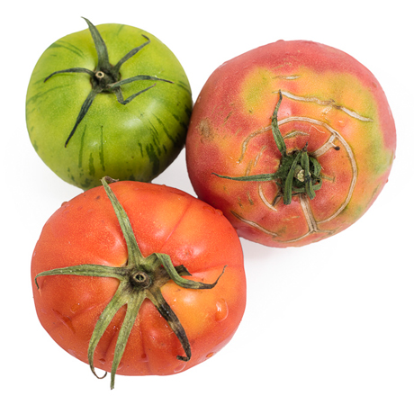 Local Organic Heirloom Tomatoes