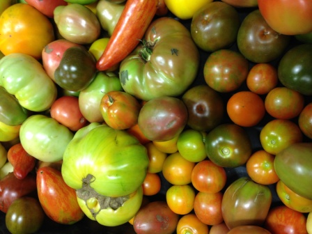 Local Organic Heirloom Tomato Seconds, 1 case