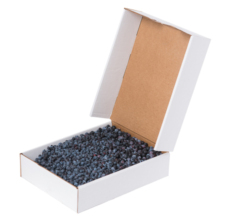 Organic Maine Wild Blueberries, 5 lb box